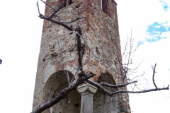 Quiliano-San-pietro-in-Carpignano-09032016-00157