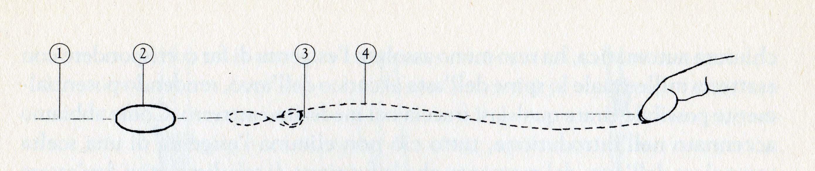 percorso-corda